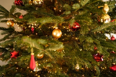 Christmas is the time for giving in Wiltshire